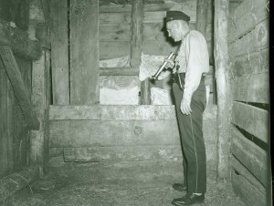 Chief McCloud looks into the feed bin at the rear of the horse barn. It is here where the bodies of the children were found.